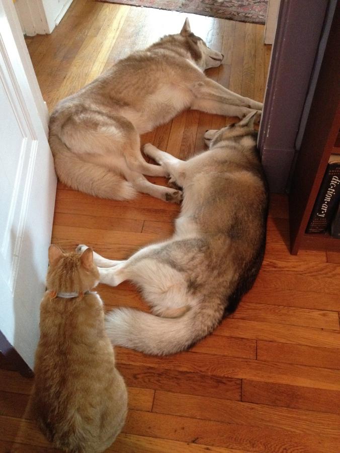 Peer Gynt standing watch over Freya and Baldr